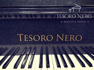BRAND NEW BLUE SG148 STEINHOVEN BABY GRAND PIANO - COLOUR CH