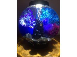3 week old BiOrb with heater, led light, built in filter and