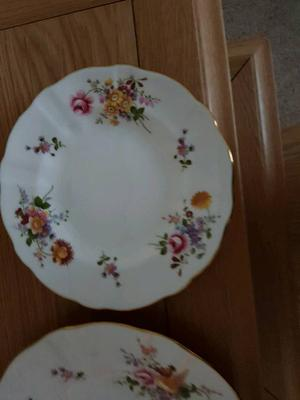 Royal crown derby china poise dinner plate