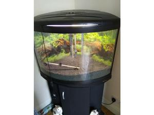 Aqua One UFO 550 fish tank for sale in Scarborough