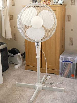Excellent Argos Oscillating Pedestal Fan 16 Inch Posot Class
