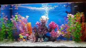 Jewel 125L fish tank with all accessories *LIKE NEW*