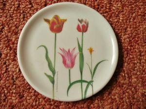 RHS Coaster Red Pink Yellow Tulip Floral Designs