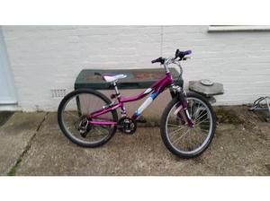 Gary Fisher tyro 21 speed 24 inch wheel mountain bike in
