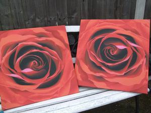 2 pictures of roses on canvas