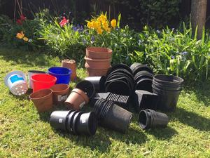 Large Collection of Garden Pots