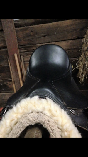 German D Flex Cob black leather GP saddle