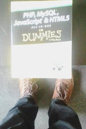 Php my sql javascript +html for dummies