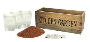 Kitchen Herb Kit Garden Herbs Windowill Window Box Planter