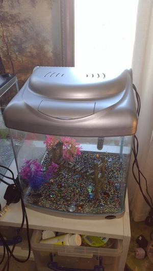 Small fish set up aprox 1 ft cube