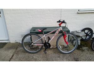 Raleigh Zero 6 18 speed 24 inch wheel mountain bike in