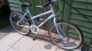 "Raleigh Girls 24"" wheel mountain bike"