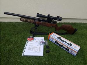 BSA R10 MK2 RATWORKS.22 in Carlisle