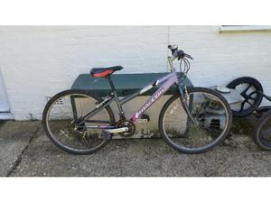 Raleigh Tantrum 18 speed 26 inch wheel mountain bike in