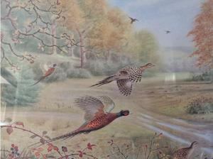Pheasants in the Autumn by R. Reckitt in Rugby