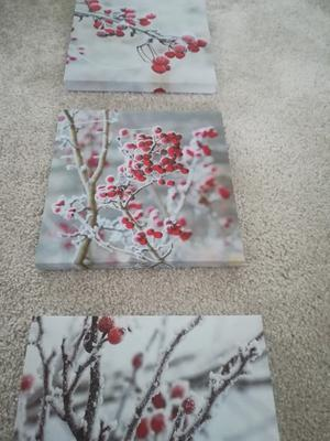 Three piece canvas picture set