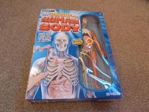 Squishy Human Body game/ toy by SmartLab
