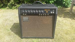 Vintage Roland Bolt 30 Valve Amp