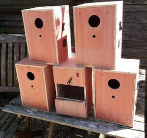 5 x nest boxes