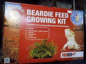 Beardie Feed Growing Kit