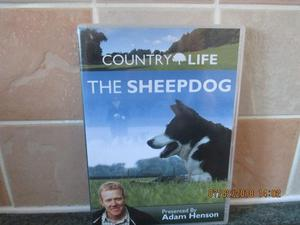 COUNTRY LIFE THE SHEEPDOG