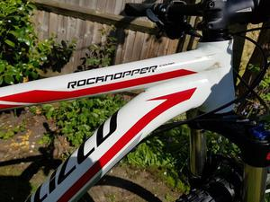 Specialized 29er Rockhopper Comp Mountain bike