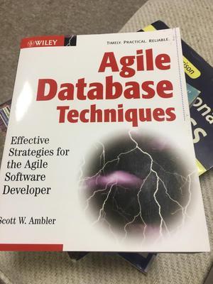 Agile database techniques
