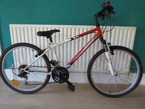 "BOYS 24"" WHEELED MOUNTAIN BIKE. RAIDER SX. GREAT CONDITION. ALL FULLY WORKING. READY TO RIDE AWAY ON"