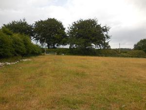 Large field and 4/5 stables to rent Matlock
