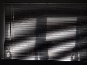 White wooden Venetian blinds 6ft wide