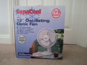 Electric 12 inch desk fan.