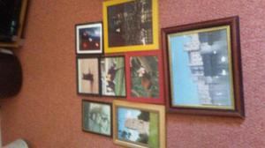 8 picture frames rangeing from 8 x 8 and half to 18 x 15 and