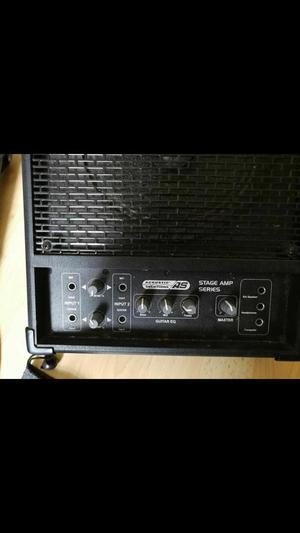 AS 100watt wedge monitor/acoustic amp