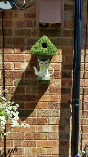 Tea pot bird boxes