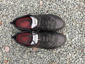 Mens Ecco brogue style golf shoes Size 11