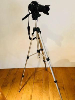 Sony alpha 230 digital SLR camera plus additional Tamron mm lens, carry bag and tripod