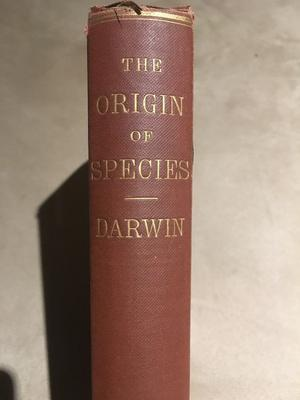 The Origin of Species - Charles Darwin - SOUGHT AFTER SIXTH EDITION!!