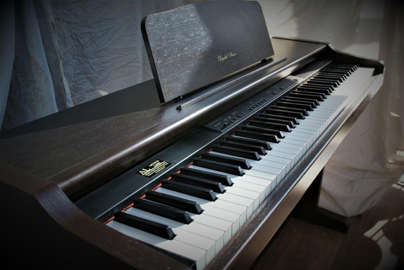Technics sx-px201m digital piano £300 ono