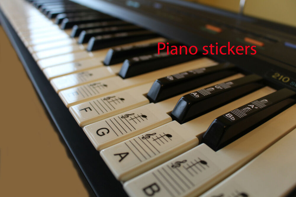 Keyboard or Piano STICKERS 61 KEY LAMINATED stickers white &