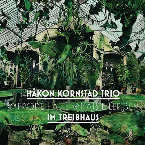 IM TREIBHAUS - KORNSTAD HAKON TRIO [CD]