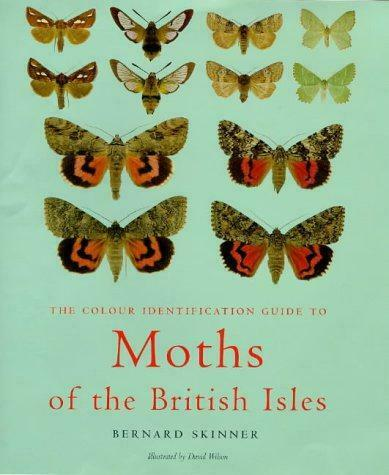 Colour Identification Guide To Moths Of The British
