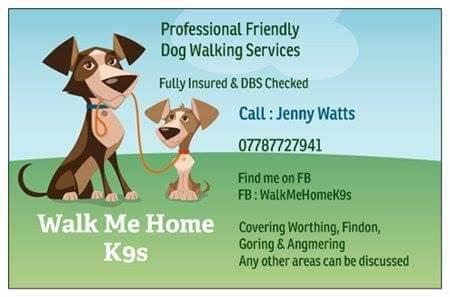 Professional friendly Dog walking services