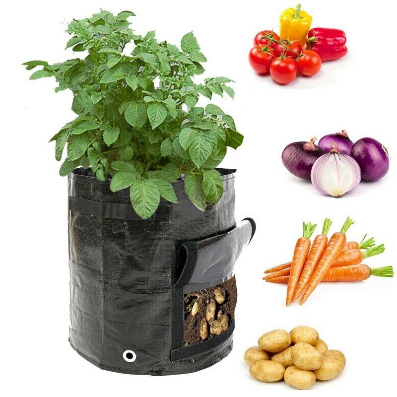 10 Gallon Garden Potato Planting Bag, Flip And Handle,