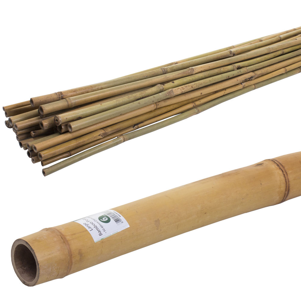 4FT/6FT/7FT/8F T BAMBOO CANES STRONG THICK POLE STICK GARDEN