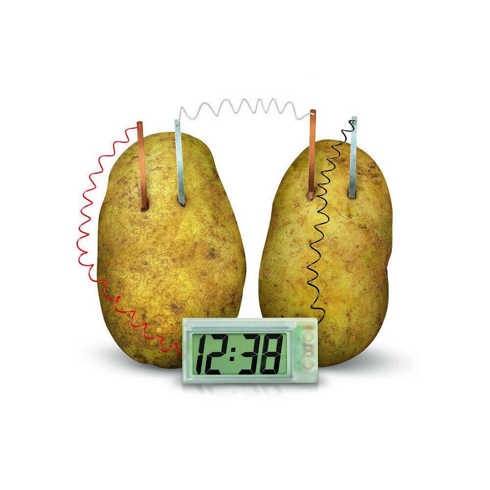 Kid Potato Clock Science Experiment Children DIY Material