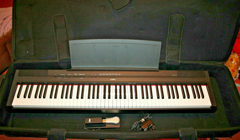 Yamaha P115 Digital Piano with Pedal, Gator Wheeled Case,