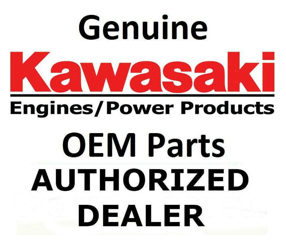 Genuine Kawasaki  Volt Electric Starter