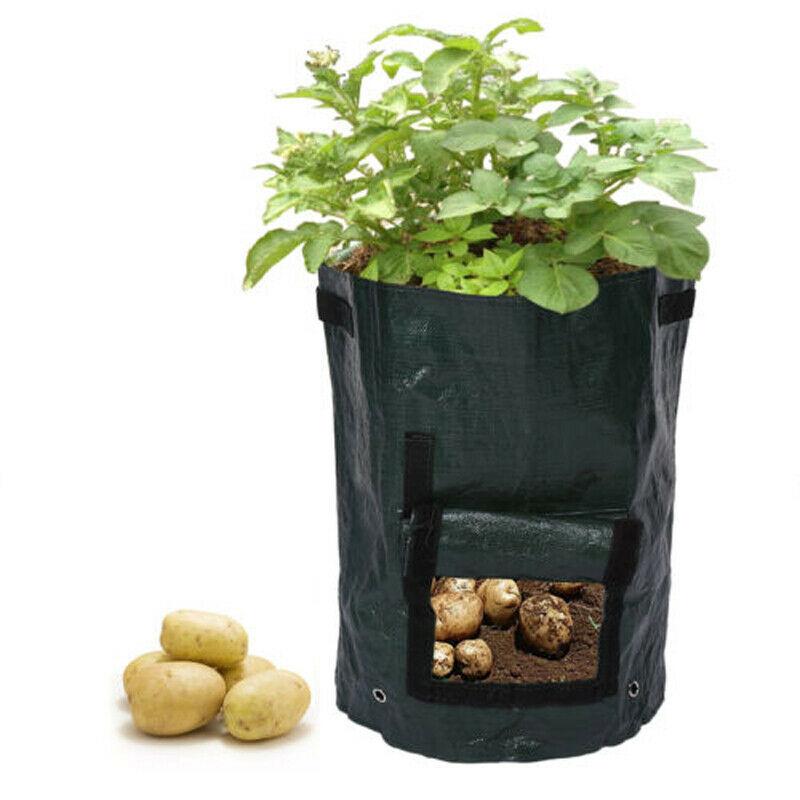 Garden Fruit Plant Grow Potato Bags Strawberry Sack Spuds