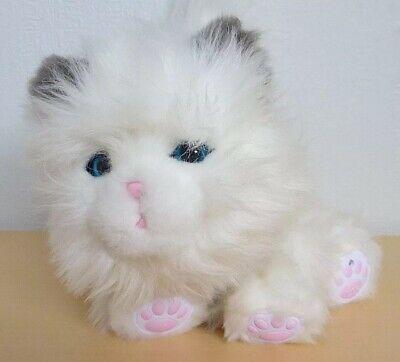 Little Live Pets - My Dream Kitten Toy