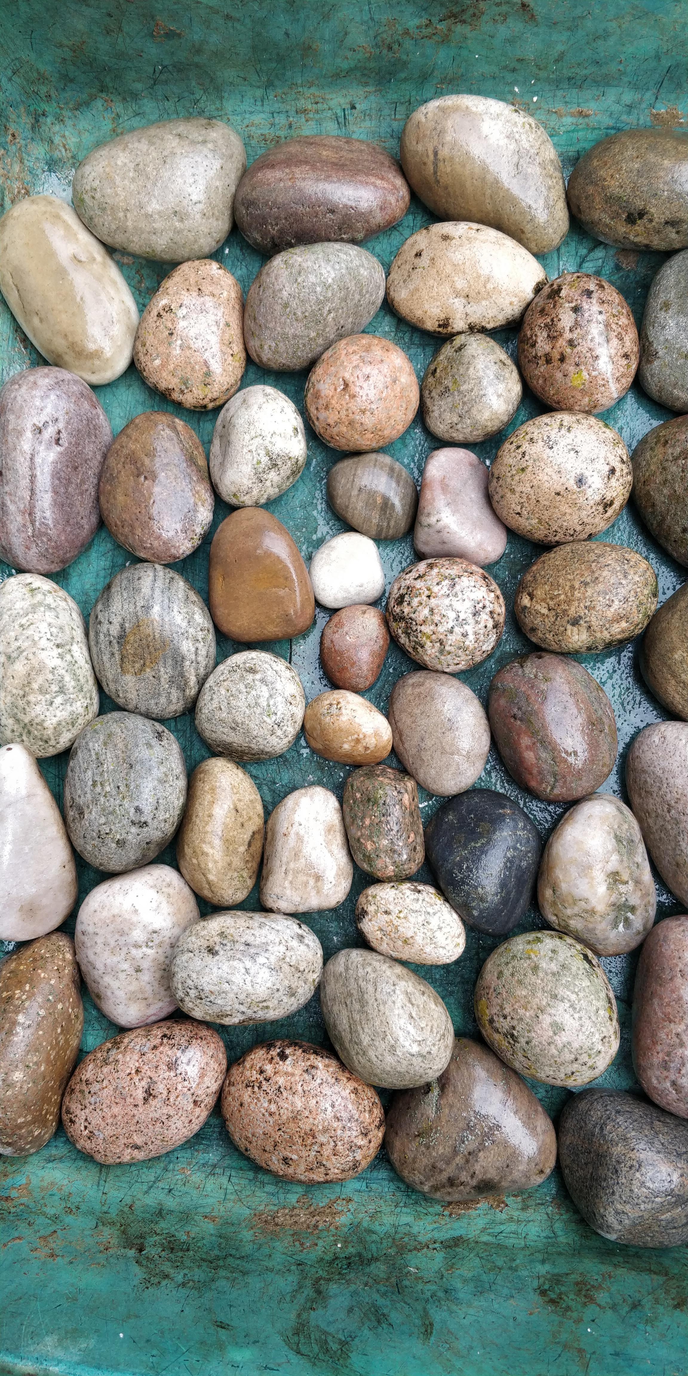 Decorative Beach Pebbles